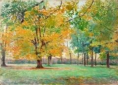 Paysage d'arbre