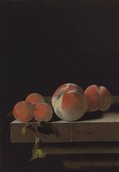 Peaches and apricots on a stone ledge