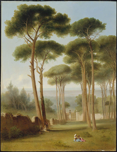 Pines of the Villa Barberini