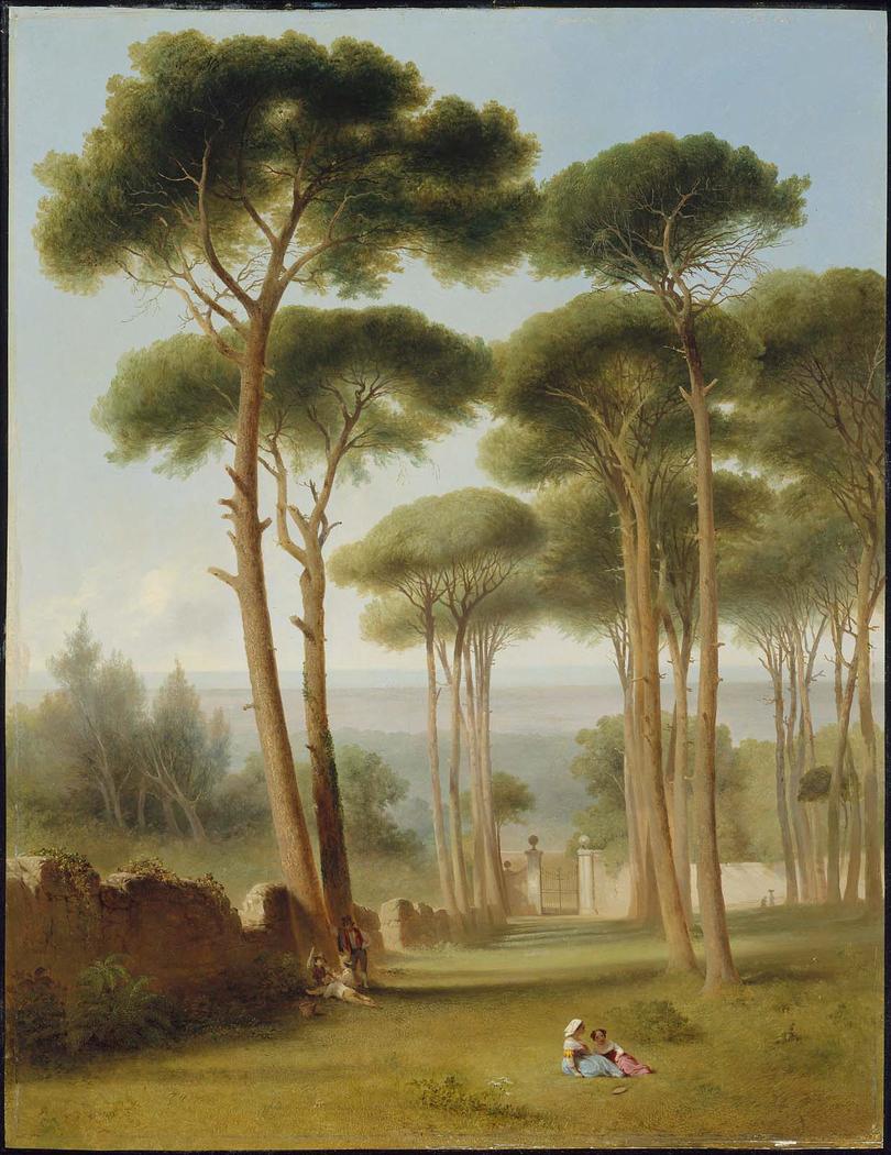 Pines of the Villa Barberini