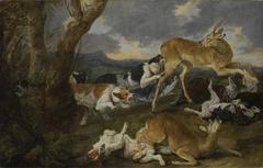 Rehe von Hunden verfolgt