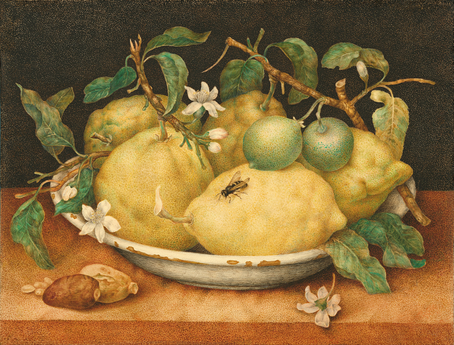 Still Life with Bowl of Citrons