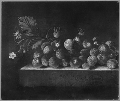 Still-Life with Strawberries