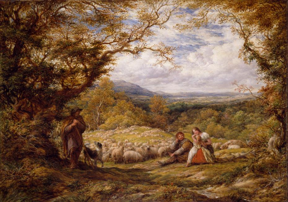 The Sheep Drive