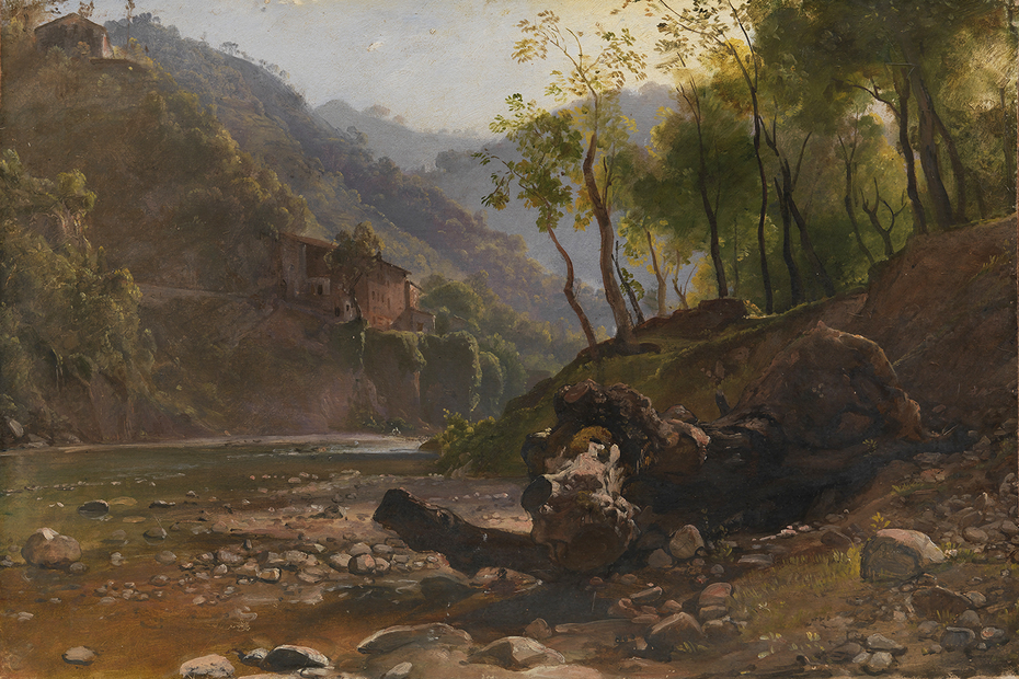 View of a Wooded River