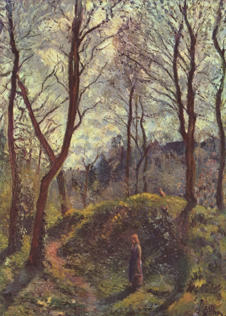 Woodland scene. Spring