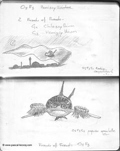 Carnet Bleu: Encyclopedia of…shark, vol.I p33 by Pascal