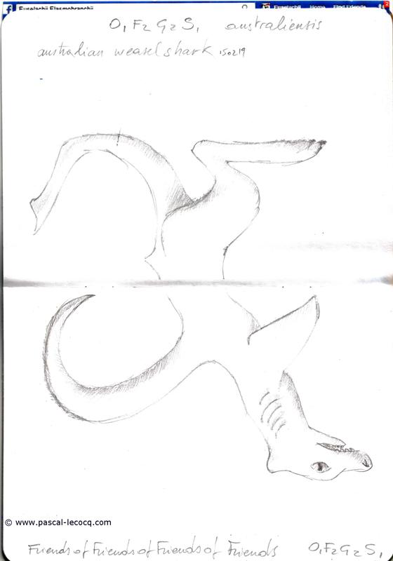 Carnet Bleu: Encyclopedia of…shark, vol.XIV p04 - by Pascal