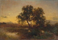 Early Evening Landscape