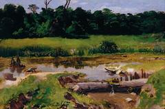 Fluvial Landscape