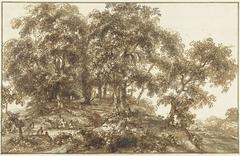 Landschap met bomengroep
