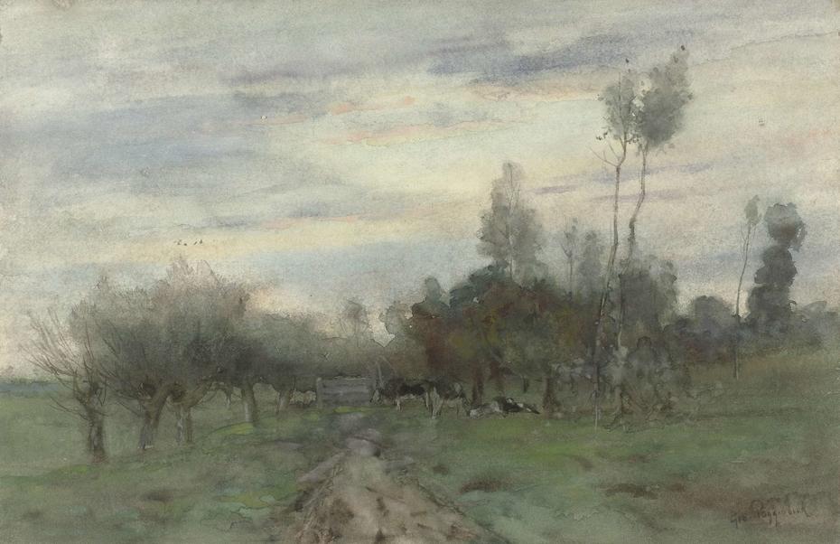 Landweg met koeien in de schemering