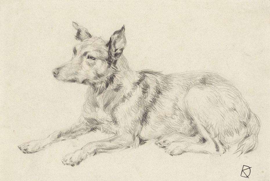 Liggende wolfshond