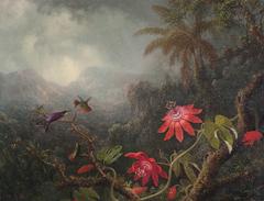 Passion Flowers with Three Hummingbirds