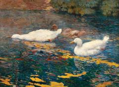 Patinhos no lago