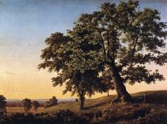 The Charter Oak