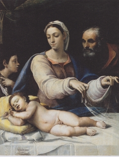 The Madonna wth the Veil