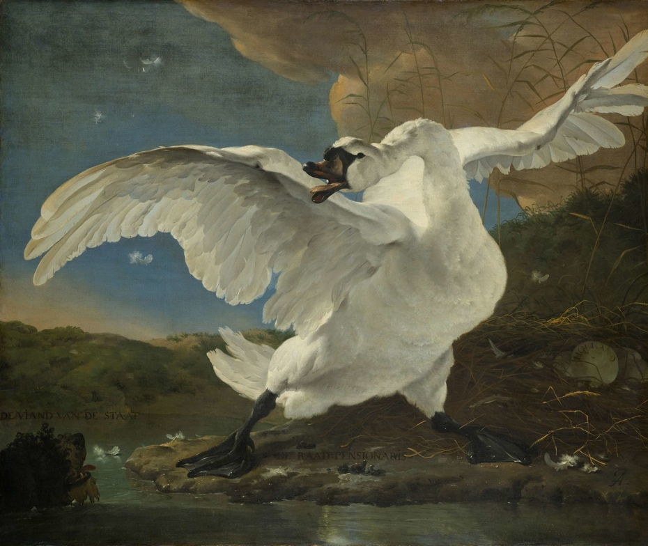 The Threatened Swan