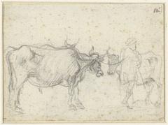 Twee koeien en een herder