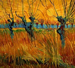Willows at Sunset