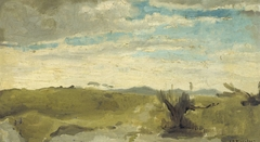 View in the Dunes near Dekkersduin, The Hague